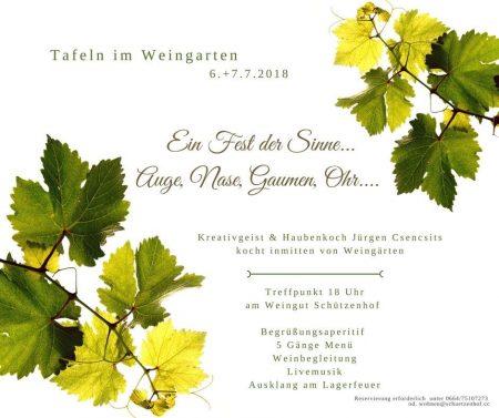 Tafeln im Weingarten . Weingut Schützenhof . Jürgen Csencsits . 6. und 7.7.2018