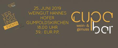 Verkostungs Events . Cupa Bar . Weingut Hannes Hofer . Gumpoldskirchen 25. Juni 2019